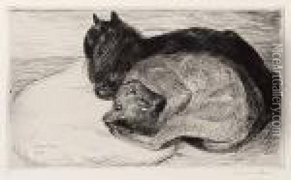 Two Sleeping Cats Oil Painting - Theophile Alexandre Steinlen