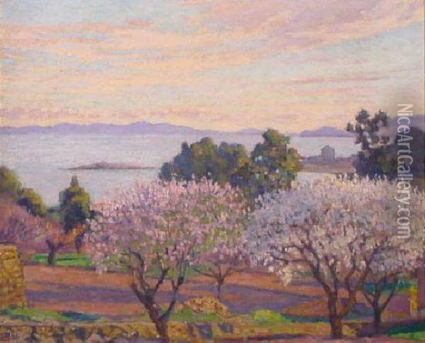 Flowering Trees, Southern France Oil Painting - Theo van Rysselberghe
