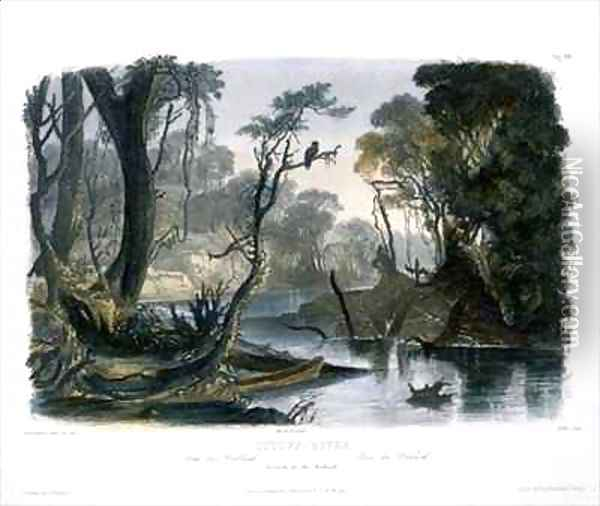 Cutoff River, Branch of the Wabash Oil Painting - Karl Bodmer
