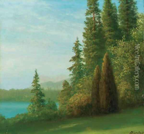 Landscape With Trees And Lake Oil Painting - Albert Bierstadt