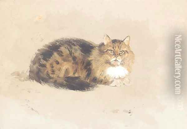 Study of cat Oil Painting - Archibald Thorburn