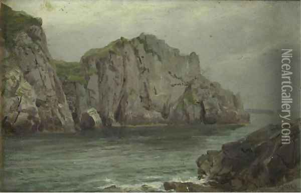 Cliffs By The Sea Oil Painting - William Trost Richards
