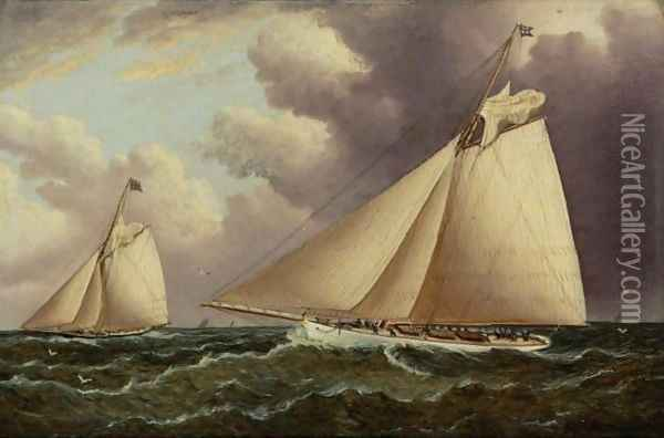 Volunteer And Thistle Oil Painting - James E. Buttersworth