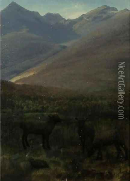White Mountains Near Glen House Oil Painting - Albert Bierstadt