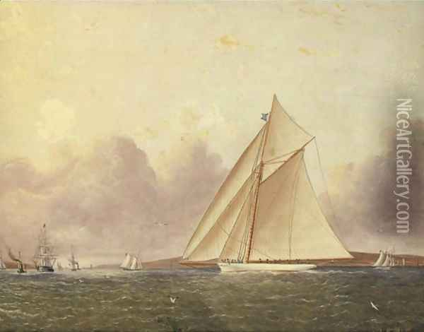 A View Of New York Sound, The 'Volunteer' In The Foreground Oil Painting - James E. Buttersworth