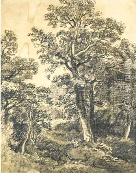 A Wooded Landscape, East Bergholt Oil Painting - John Constable