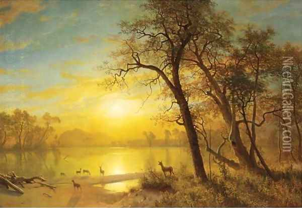Mountain Lake 3 Oil Painting - Albert Bierstadt