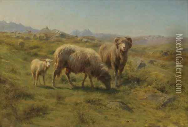 A Sheep, Ram And Lamb With The Flock Oil Painting - Rosa Bonheur