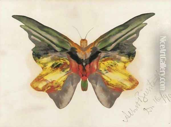 Butterfly 4 Oil Painting - Albert Bierstadt