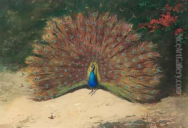 Peacock And Butterfly Oil Painting - Archibald Thorburn