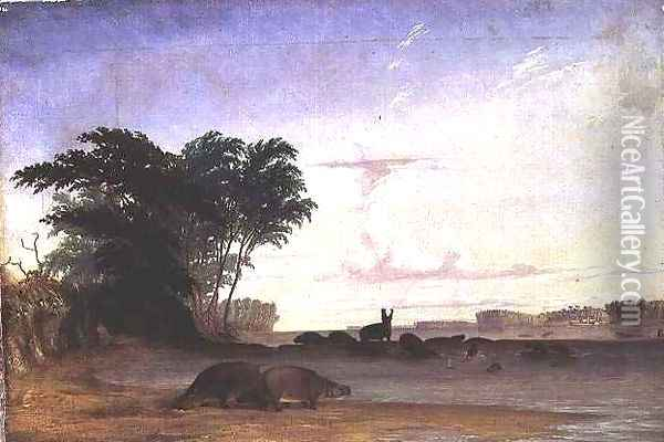 A Herd of Hippopotami near the mouth of the Luala River Oil Painting - Thomas Baines