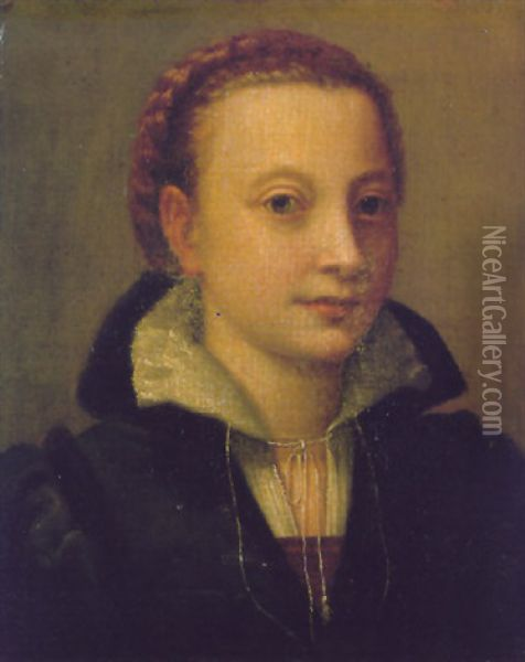 Portrait Of Minerva Anguissola, Wearing A Black Dress, A Brown Bodice And A White Lace Chemise Oil Painting - Lucia Anguissola