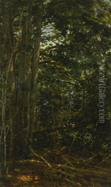 Deep In The Woods Oil Painting - William Bliss Baker