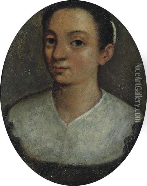 Portrait Of A Lady Oil Painting - Lucia Anguissola