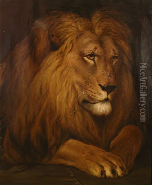 A Lion Oil Painting - Herbert Thomas Dicksee