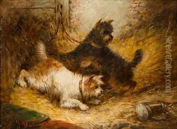 Terriers And Spaniels: Two Oil Painting - George Armfield