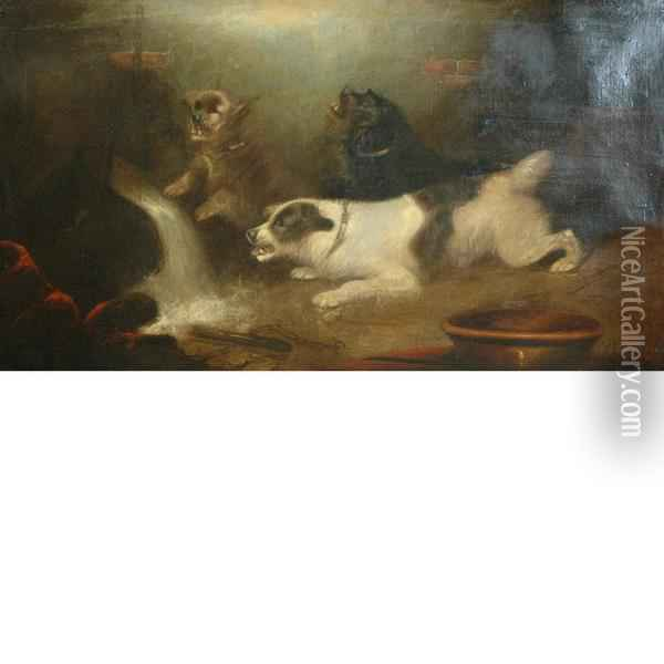 Mischievous Dogs Oil Painting - George Armfield