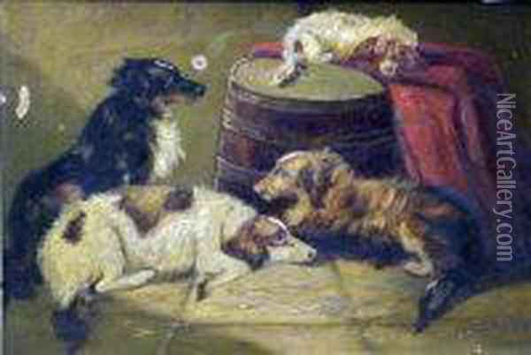 Dogs Oil Painting - George Armfield