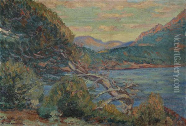 Paysage De Provence Oil Painting - Armand Guillaumin