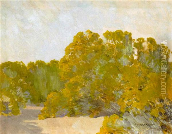 A Grove Of Trees In The Sun Oil Painting - Fernand Harvey Lungren
