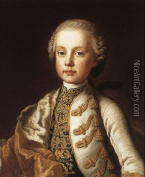 Portrait Of A Young Boy Oil Painting - Martin van Meytens the Younger
