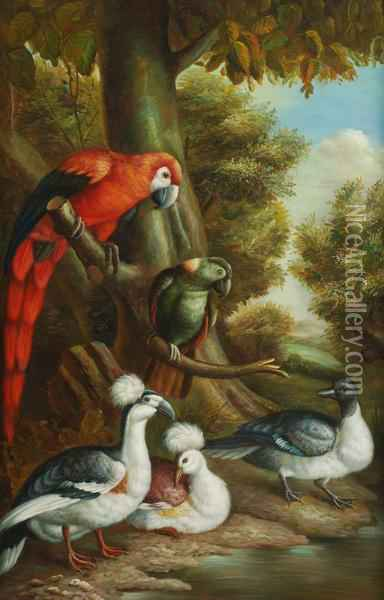 Parrots And Other Exotic Birds Oil Painting - Jakob Bogdani Eperjes C