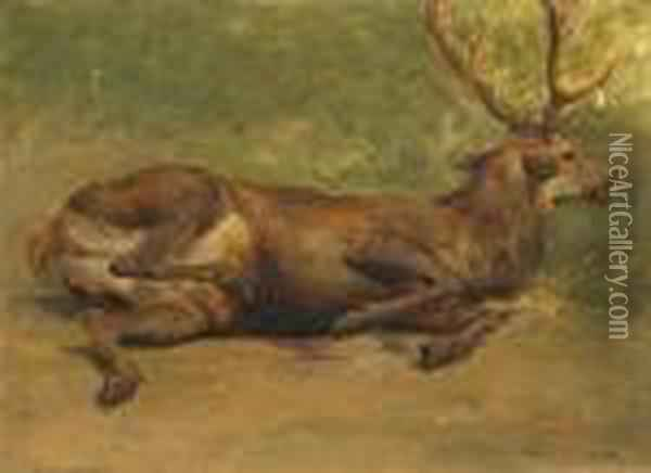 Wounded Stag Oil Painting - Rosa Bonheur