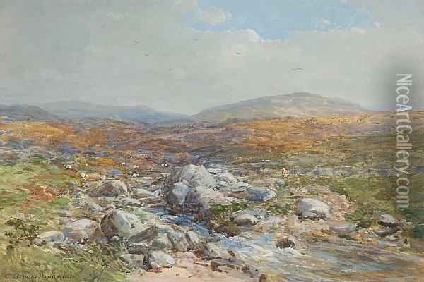 Landscape With Stream Oil Painting - Charles Branwhite