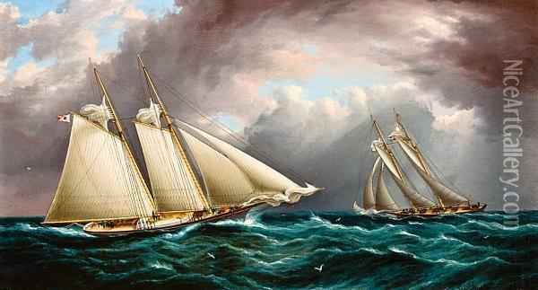 Yacht Race   Depicting The Schooner Yacht Oil Painting - James E. Buttersworth