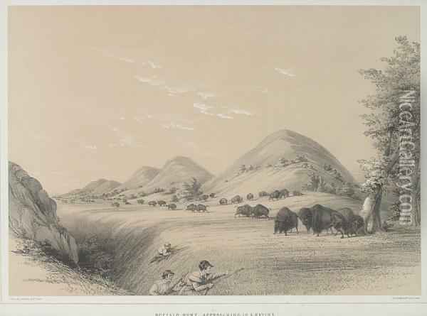 Buffalo Hunt, Approaching A Ravine Oil Painting - George Catlin