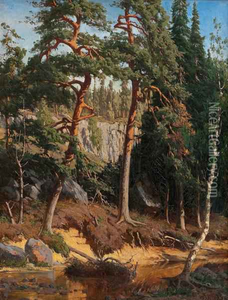 Inthe Forest Oil Painting - Fanny Churberg