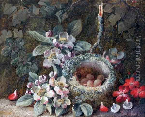 Still Lifes Of Fruit, Flowers And A Birds Nest Oil Painting - Vincent Clare