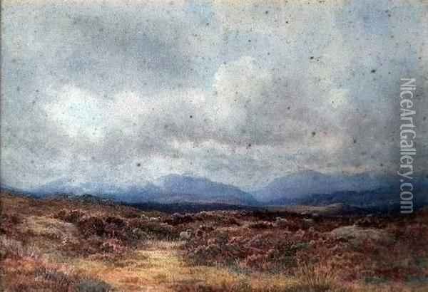 Scottish Moorland Scene With Sheep Oil Painting - George, Captain Drummond-Fish