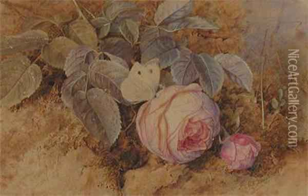 Still Life Of Roses On A Mossy Bank Oil Painting - Mary Elizabeth Duffield