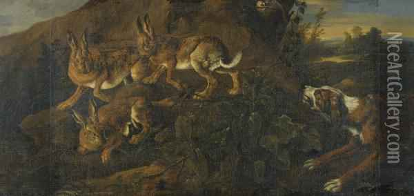 A Hound Chasing Three Hares Oil Painting - Jan Fyt