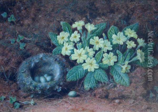 Still Life Of A Bird's Nest And Primroses Against A Mossybank Oil Painting - William B. Hough