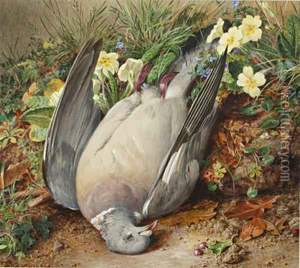 Pigeon On A Primrose Bank Oil Painting - William Henry Hunt