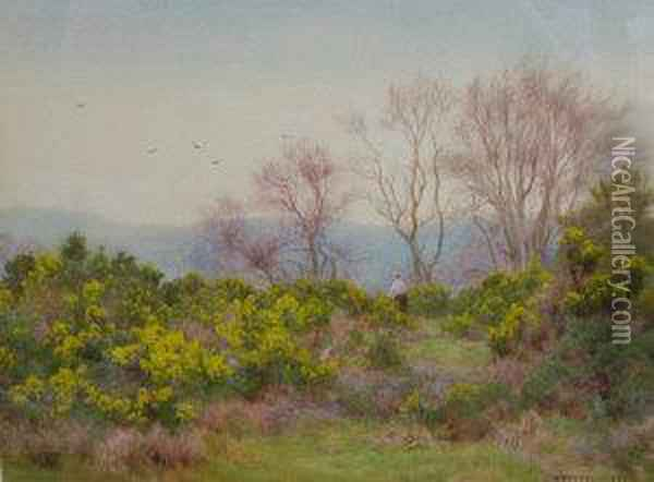 Spring On The Heath, Near Reigate Oil Painting - George Marks