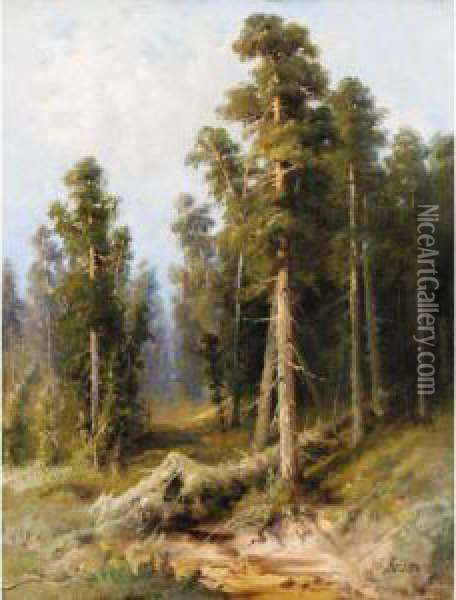 Forest With Wind-felled Trees Oil Painting - Alexander Petrovich Apsit