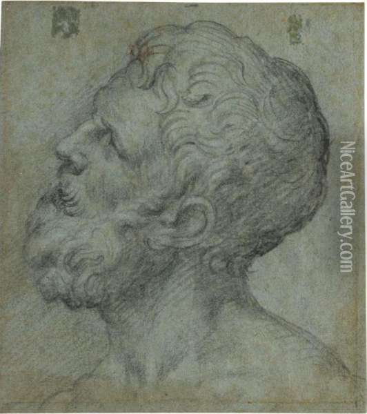 Head Of A Man, Looking Upwards To The Left Oil Painting - Giuseppe Salviati