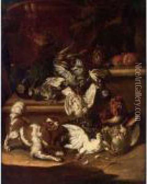 A Dog And Cat Chasing Pigeons, A Partridge And Poultry On A Stone Ledge Oil Painting - Christoffel Puytlinck