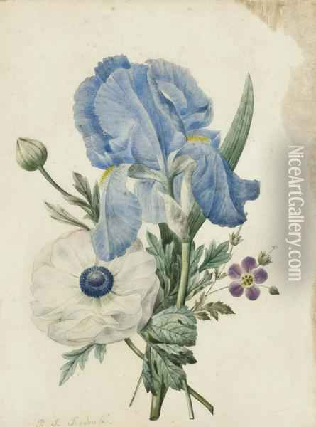 A Blue Iris, A Geranium And A White Poppy Oil Painting - Pierre-Joseph Redoute