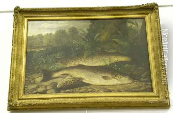Salmon On A Riverbank Oil Painting - Henry Leonidas Rolfe