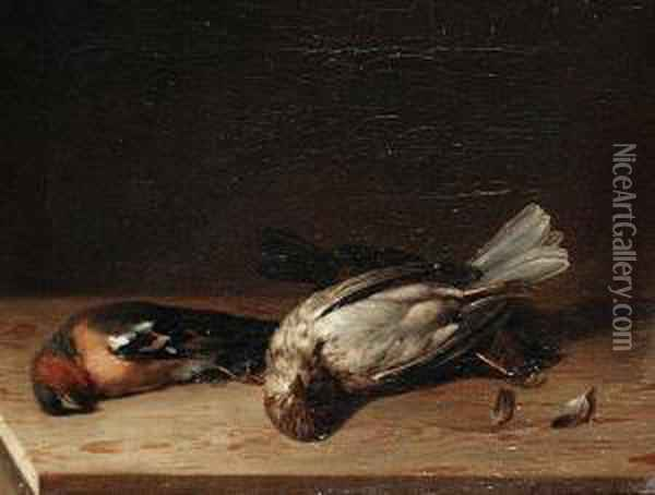 Still Lifes Of Fallen Birds Oil Painting - Joaquin Siguenza