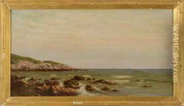 A Tranquil Afternoon Along The Coast Oil Painting - Francis Augustus Silva